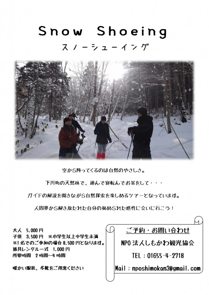 Snow Shoeing チラシ-1